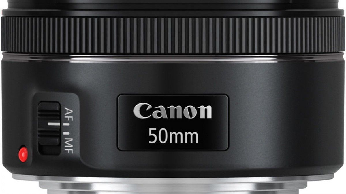 Canon 50 mm f/1.8 II indispensable